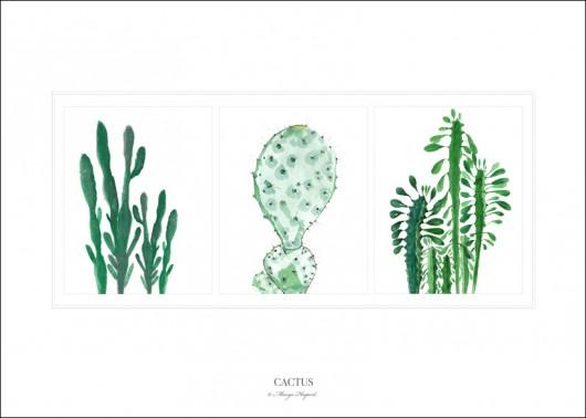 grafiki i ilustracje-cactus |print| 50x70 cm.