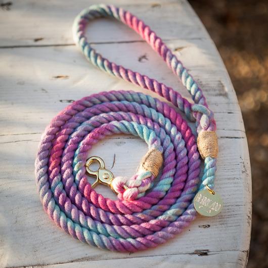 dla zwierząt-Smycz Purple Chameleon classic