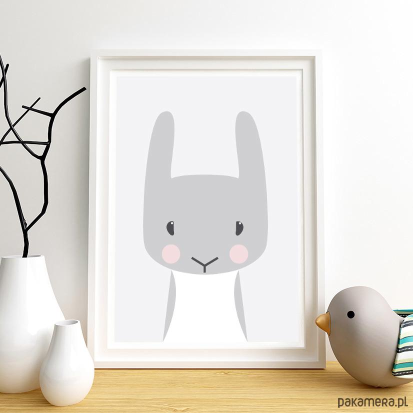 Plakat Dla Dzieci Zwierzęta Królik Zając A3 Pakamerapl