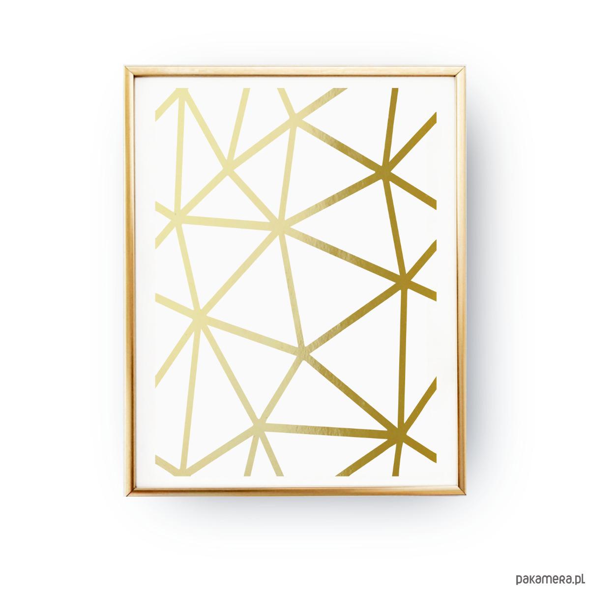 Geometryczne Linie łączone Złoty Druk Pakamerapl