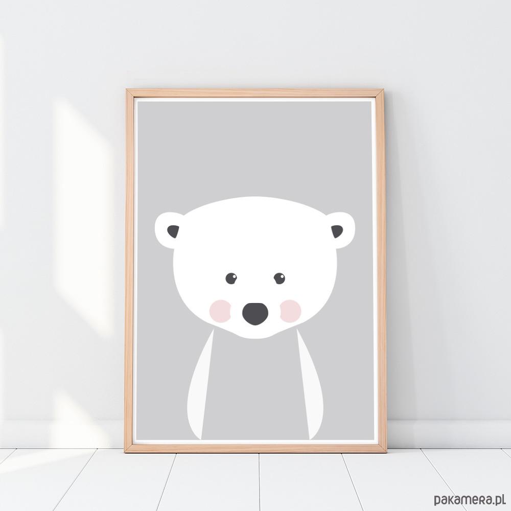 Plakat Dla Dzieci Zwierzęta Miś Polarny A3 Pakamerapl