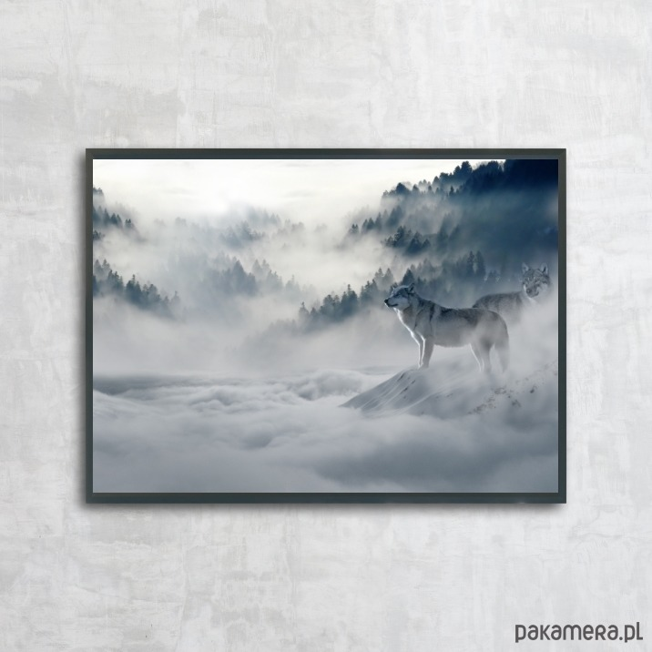 Plakat Las Mgła Wilki Plakaty Pakamerapl