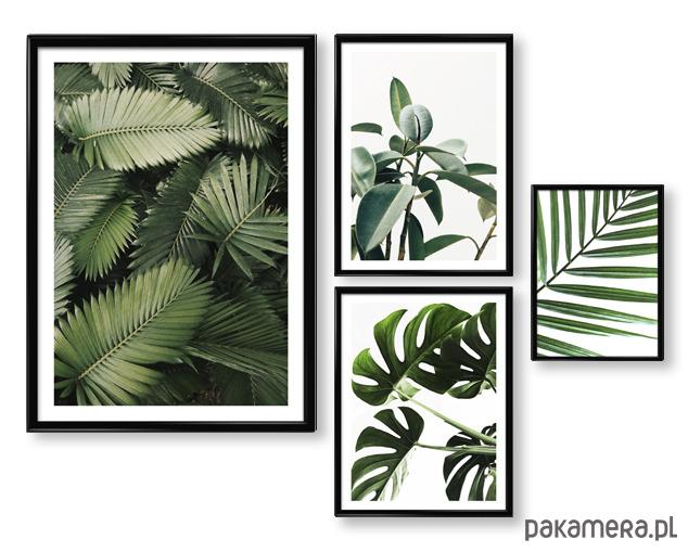 Zamówienie Specjalne Plakaty W Ramach Pakamerapl