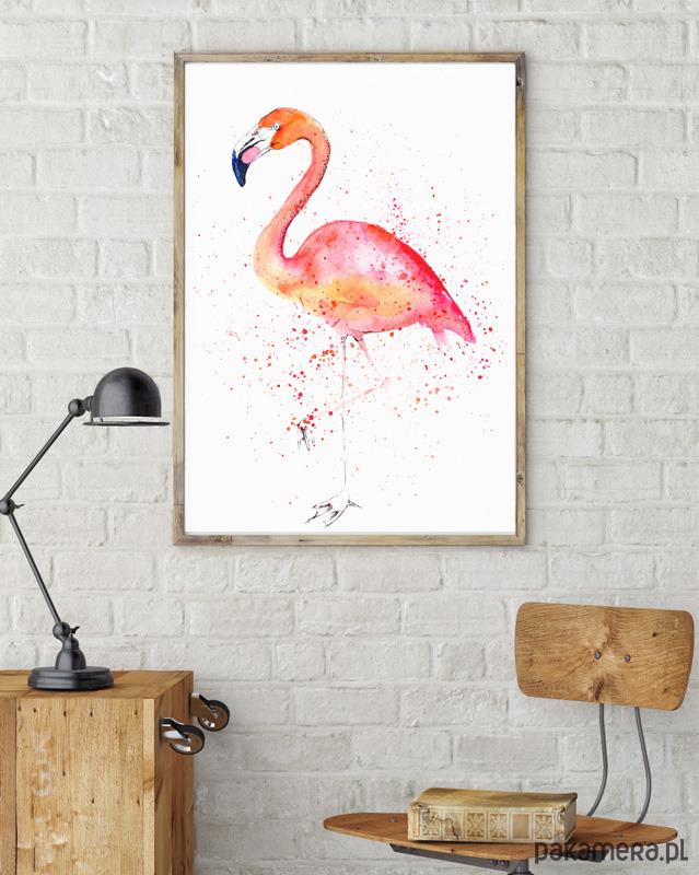 Flamingo Plakaty Ilustracje Obrazy Inne Pakamerapl