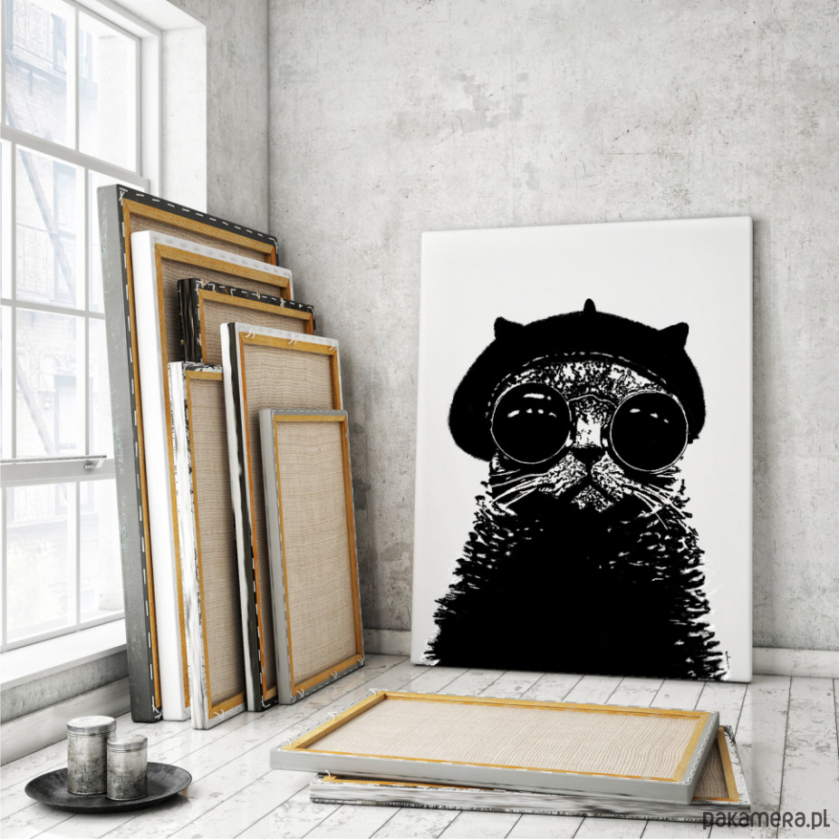 Kot Pierre Obraz Na Płótnie Plakaty Ilustracje Obrazy Inne