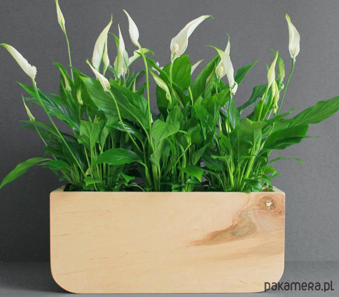 Skrzynka Na Kwiaty 3 Pakamerapl