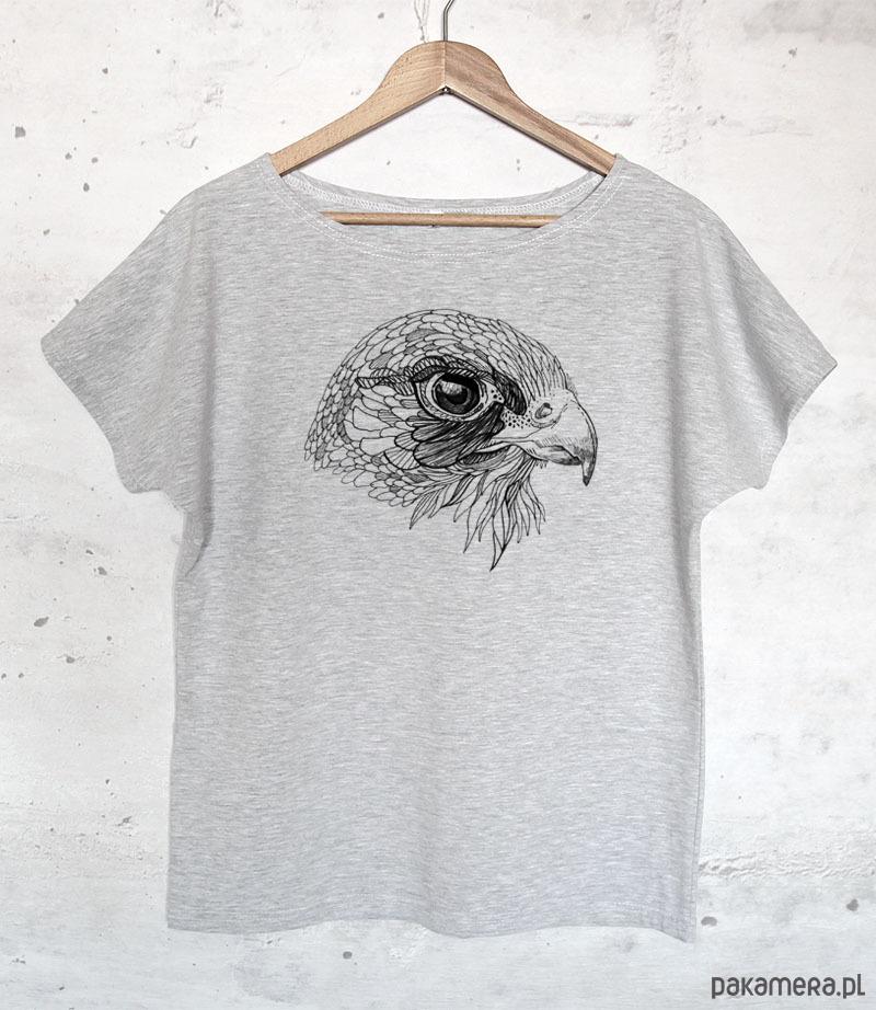 SOKÓŁ koszulka bawełniana szara z nadrukiem