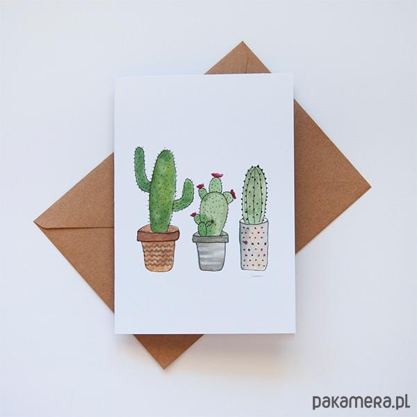 randki z kaktusami