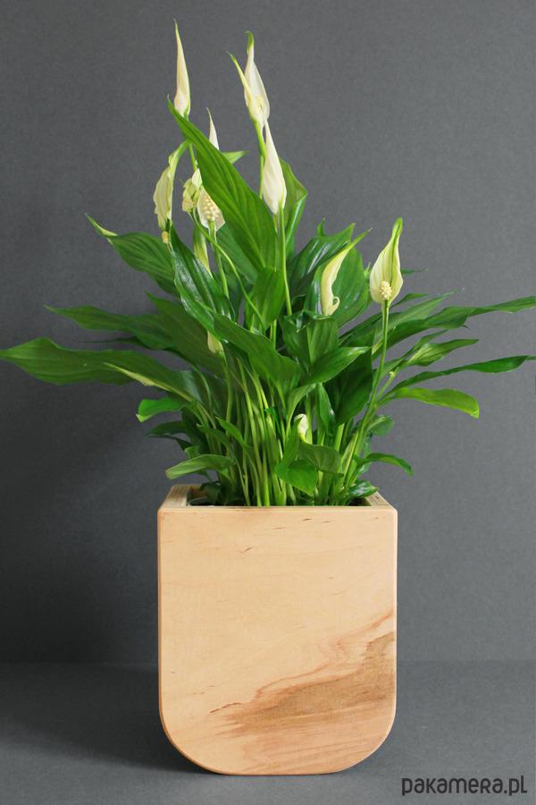 Skrzynka Na Kwiaty 1 Pakamerapl