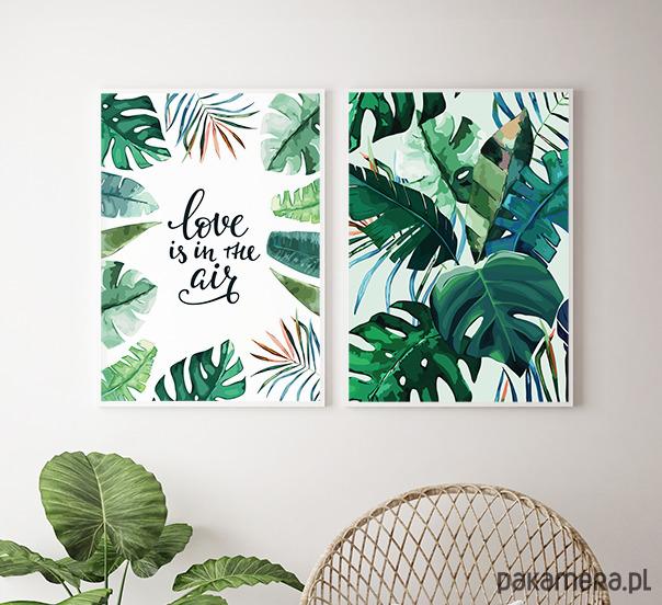 Plakaty Motywy Roślinne Love Is In The Air Pakamerapl