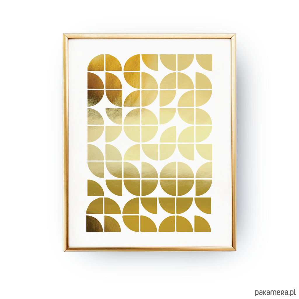 Geometryczne Kółka Złoty Druk Pakamerapl