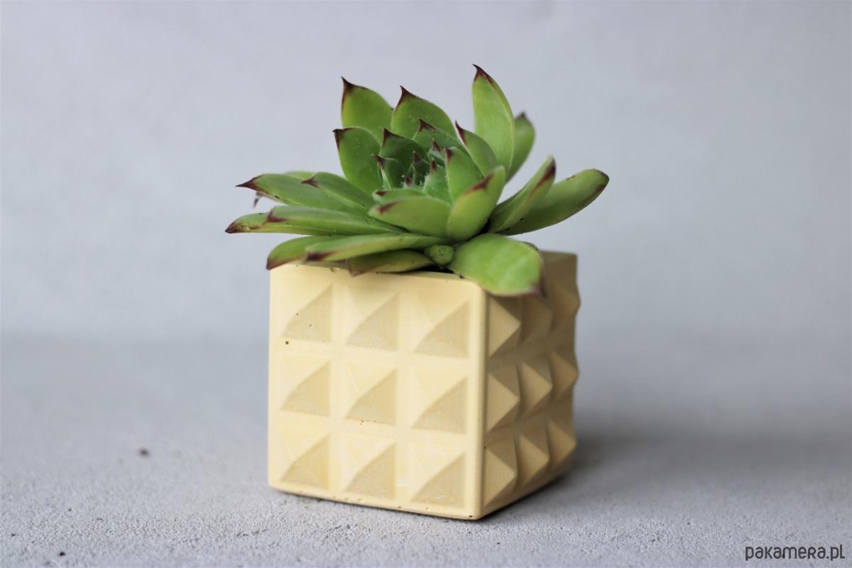Doniczka Z Betonu Pyramid Cube Yellow Pakamerapl