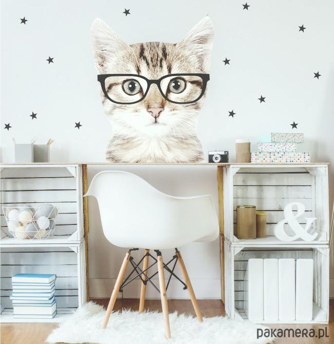 Kot W Czarnych Okularach Naklejka Na ścianę Dziecko Tapety I