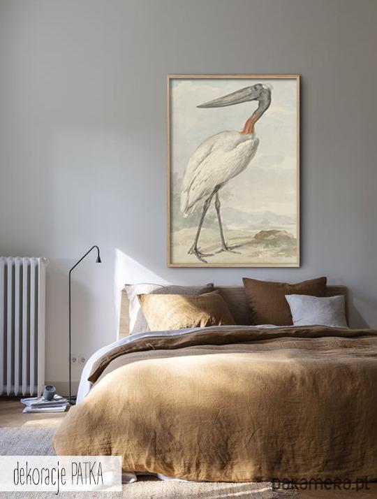 Ptak Reprodukcja Obrazu Dekoracje Wnętrz Pakamerapl
