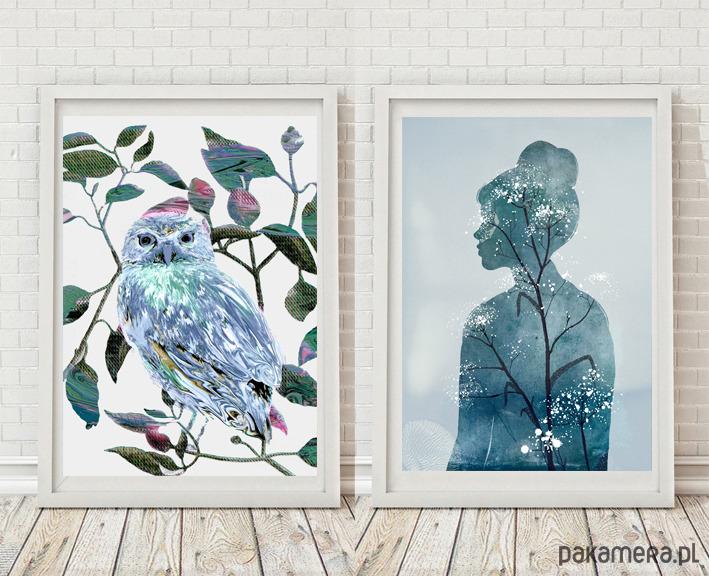 2 ilustracje | 40x50 cm - 2023232
