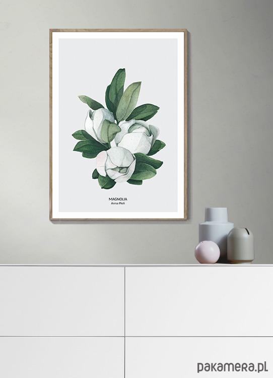 Plakat Botaniczny Magnolie Pakamerapl