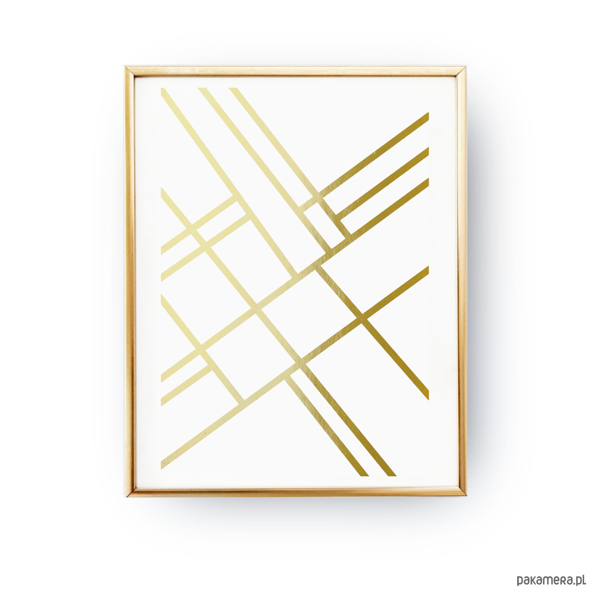 Geometryczne Linie Złoty Druk Pakamerapl