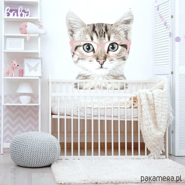 Kot W Różowych Okularach Naklejka Na ścianę Dziecko Tapety I