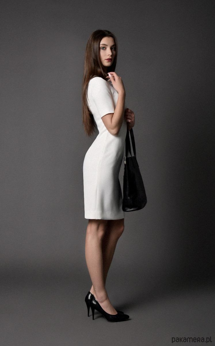 sukienka klasyczna, etui