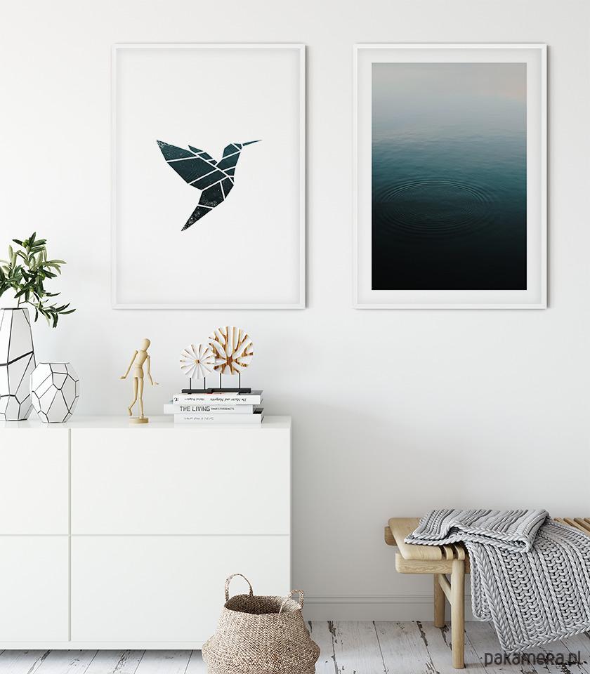 Dwa Plakaty Koliberwoda Pakamerapl