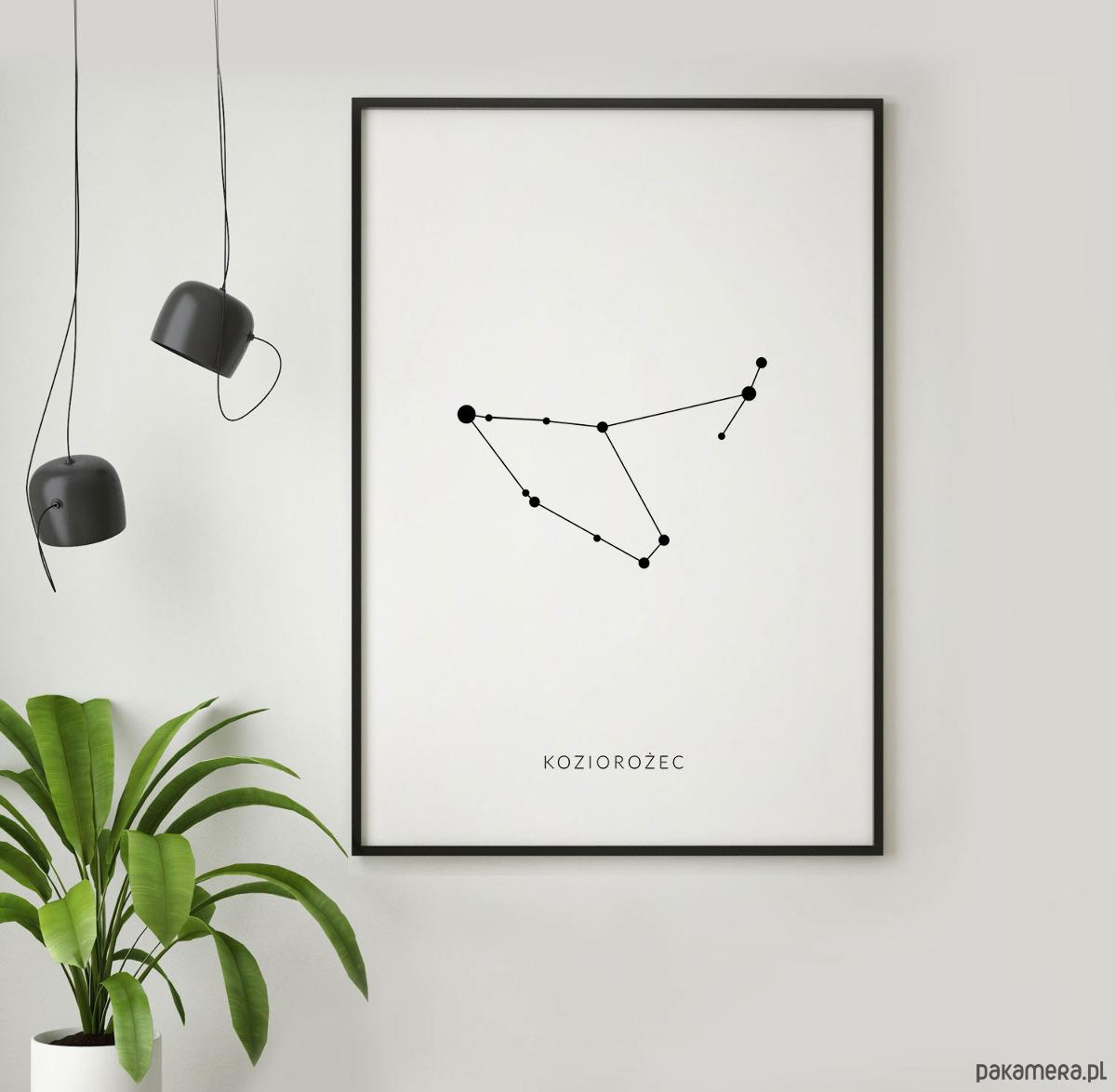 Koziorożec Znak Zodiaku Plakat Astronomiczny Pakamerapl