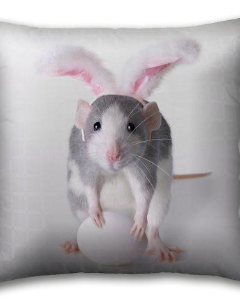 randki z szczurami prawdziwie randki