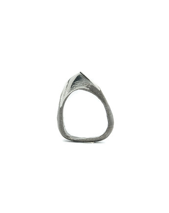 Silver, CFANIAK  ring / ALL silver