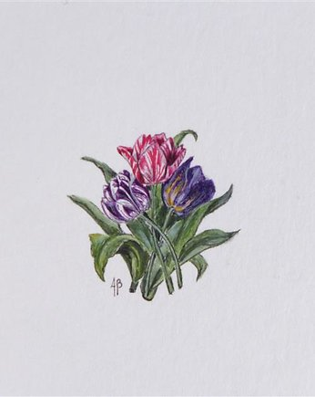 botanical, Tulipany, Botanical illustration, miniatura