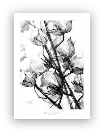 Cotton flowers print  50x70 cm